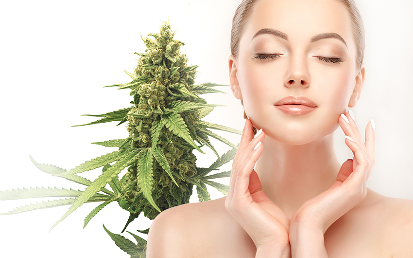 Cannabis and Beauty Products