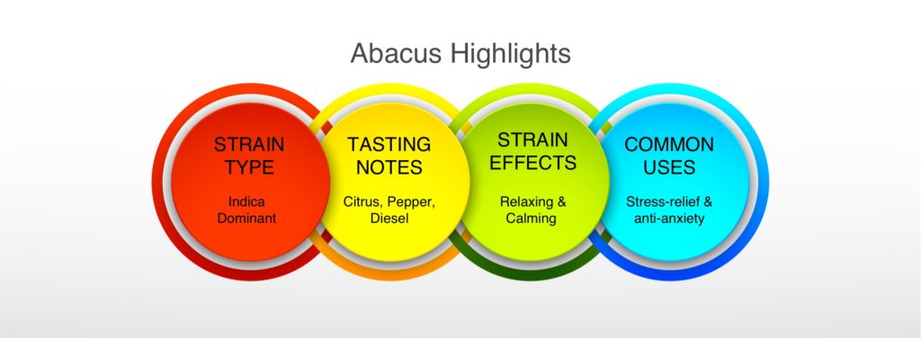 Abacus Highlights