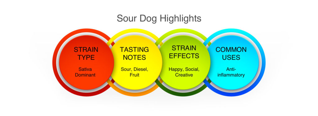 Sour Dog Highlights