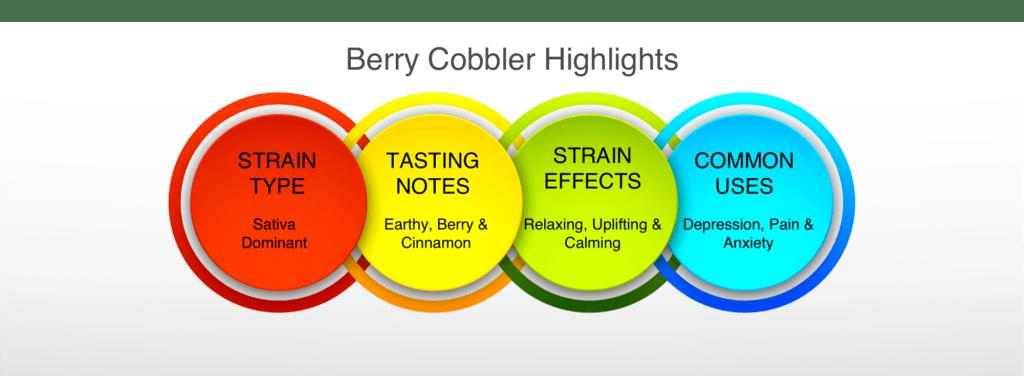 Berry Cobbler Strain highlights