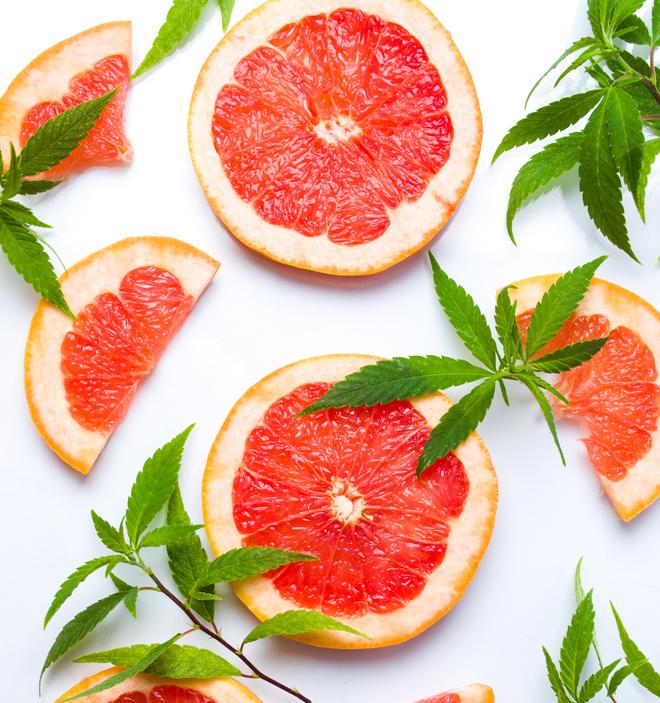 Cannabis Terpenes citrus