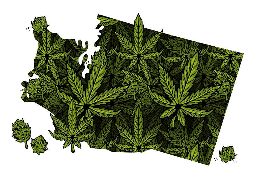 Washington Hemp Laws After The 2018 US Farm Bill