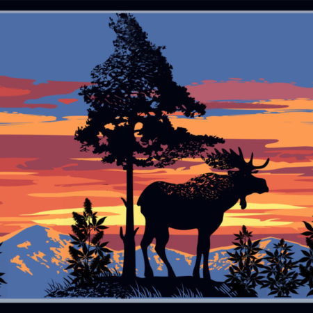 Mountains, Moose, And Marijuana — Maine CBD Hemp Flower Legality
