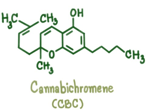 Cannabichromene CBC Cannabinoid