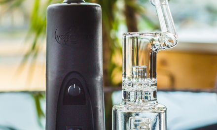 What is the best desktop Vaporizer on the market today?
