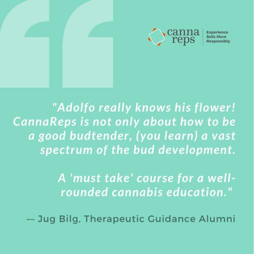 CannaReps Therapeutic Guidance Testimonial by Jug Bilg