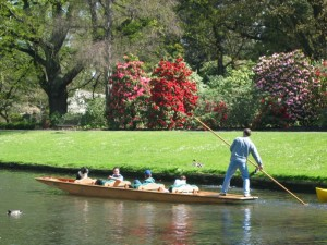 Christchurch City tour with punting in the park