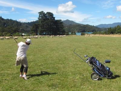 Christchurch Golf tour