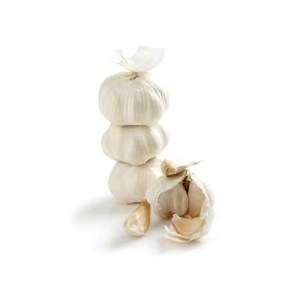 Cannich Stores : Fresh Garlic