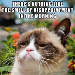grumpy-cat-meme-03