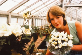 Flower arranger in one of the Cannon Hall glass houses