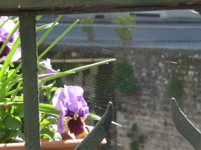 16.balcony1
