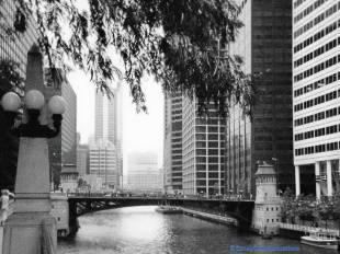 Adams Street Bridge in black and white