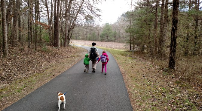 Sunday Fun Day – Smithgall Woods