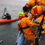 Sea kayakers called on to help with RNLI research