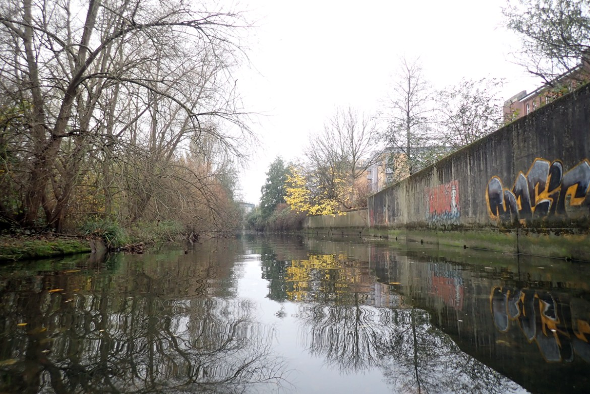 A river with a graffitied wall on one side, and vegetated banks on the other side.
