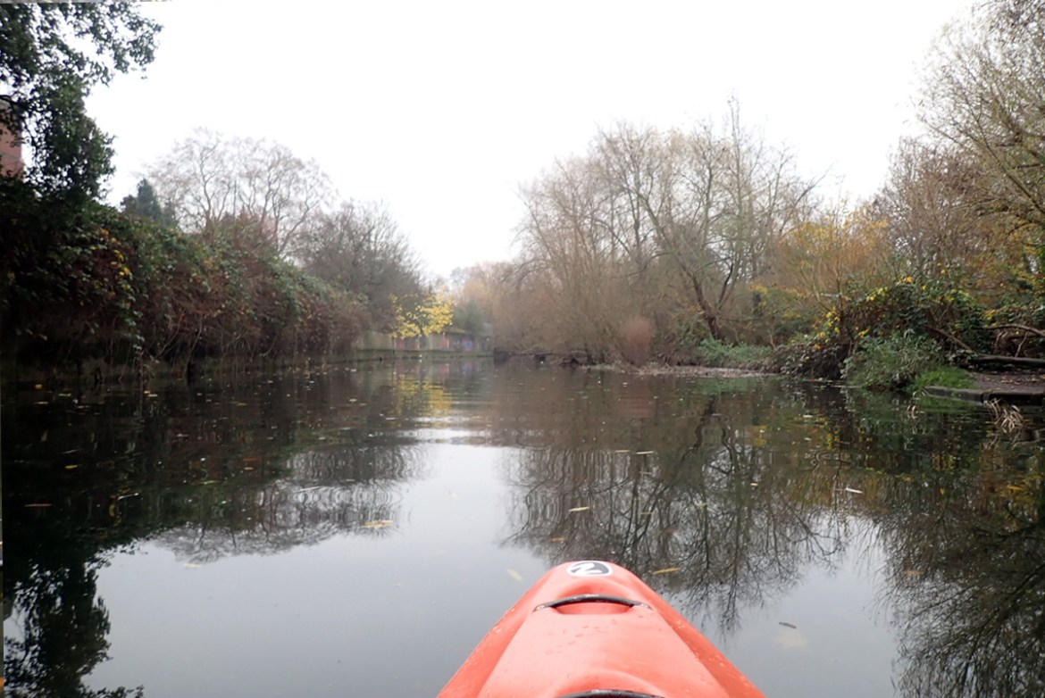 A flat, wide river. Looking upstream from a kayak. On the right, the riverbank is wooded. On the right, a concrete wall is largely hidden by vegetation.