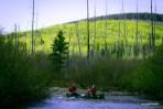 Bonaventure-River-Canoe-Trip-Scenery