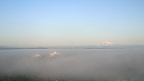 wed_fog_walk2