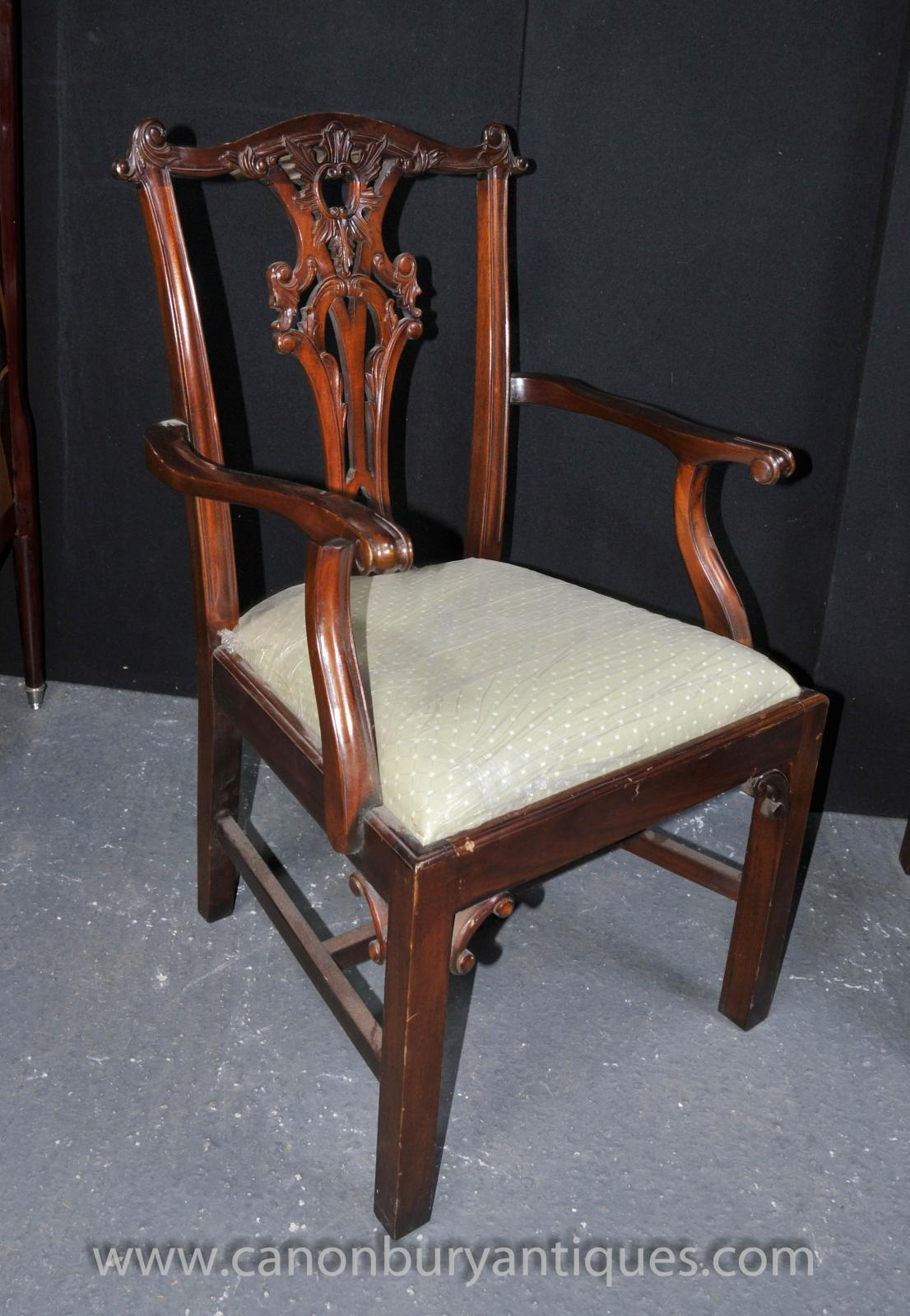 chippendale dining chair hanging indoor set 8 chairs mahogany diners ebay
