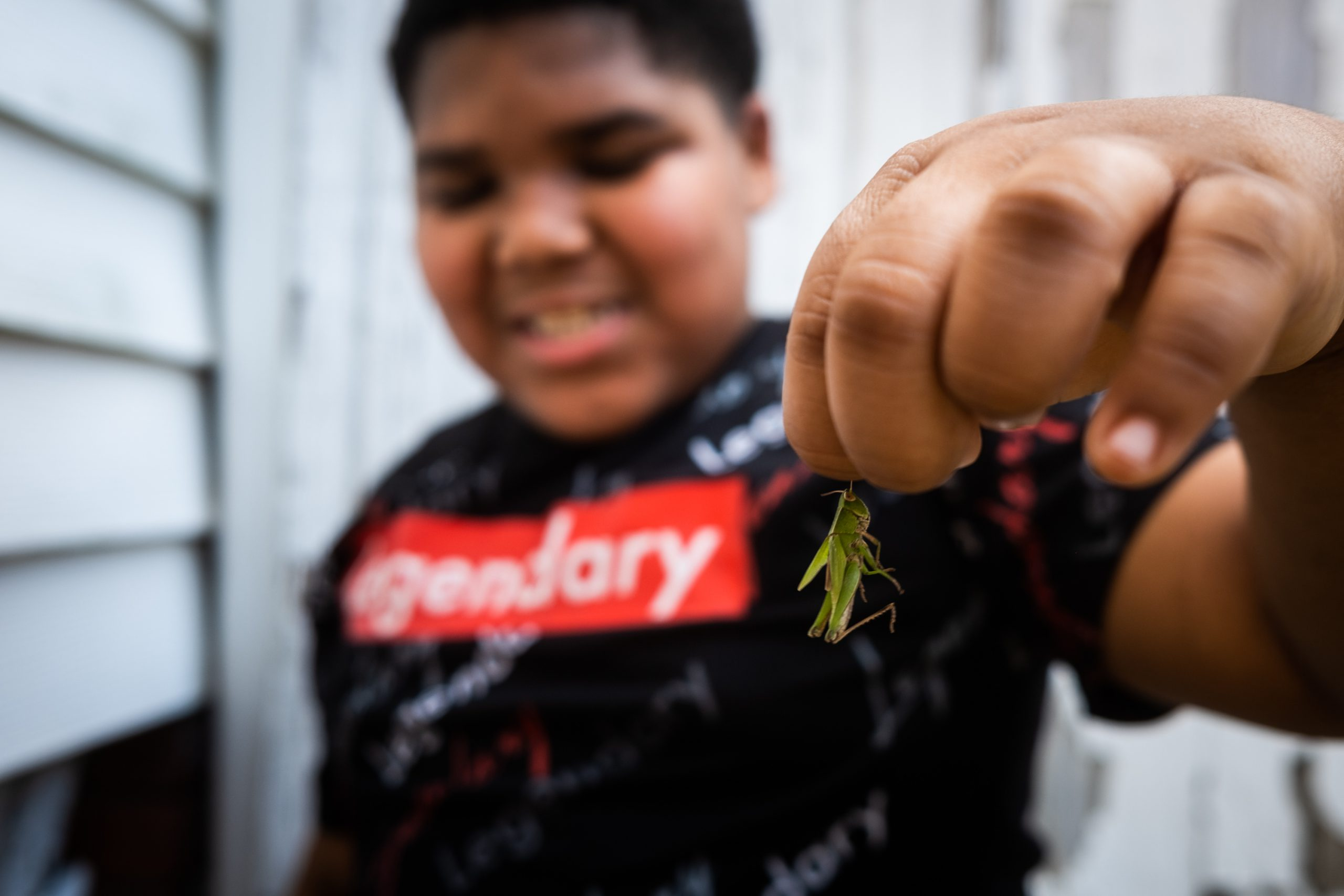 A young boy holds a grasshopper