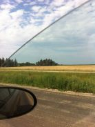 On the road home, there is nothing like finally hitting the prairies again. The space! The air!