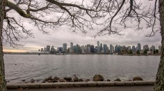 Vancouver skyline, from Stanley Park and framed by two trees.