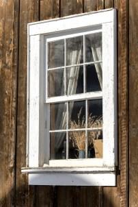 Window still-life