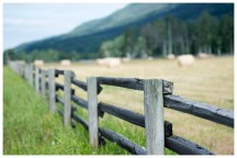 Fence and field. BC
