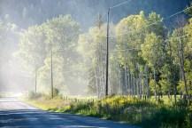 Dusty: Quesnel Hydraulic Road
