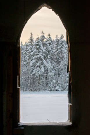 Snow-laden trees framed