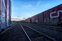 Freight trains at dawn.