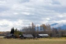 An abandoned homestead east of McBride