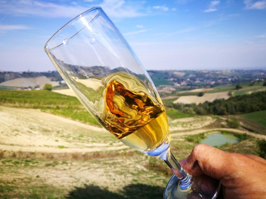 Vino naturale bianco con vista sui Colli Piacentini da Cantina Visconti