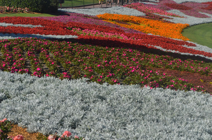 Epcot-Flower-and-Garden-Festival-parque2