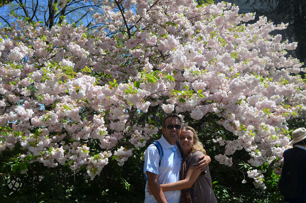 brooklyn botanic garden eu e pipo