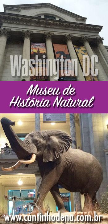 Como é a visita ao Museu de História Natutal de Washington DC