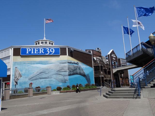 15-atracoes-imperdiveis-em-San-Francisco-pier391