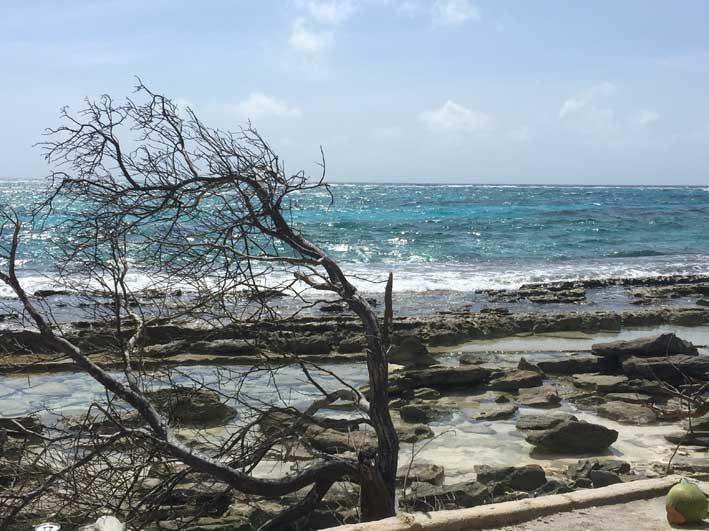 Tduo-sobre-Johnny-Cay-praia1