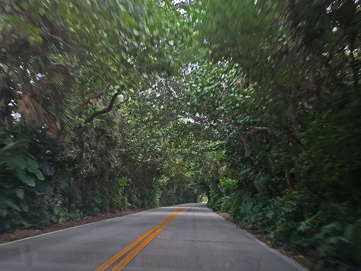 Fort-Lauderdale-bate-volta29