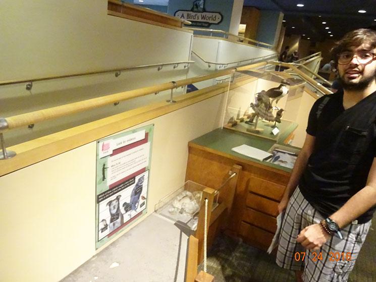 museu-de-ciencia-em-boston-20
