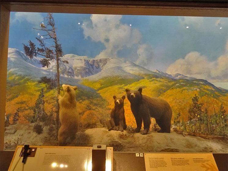 museu-de-ciencia-em-boston-6