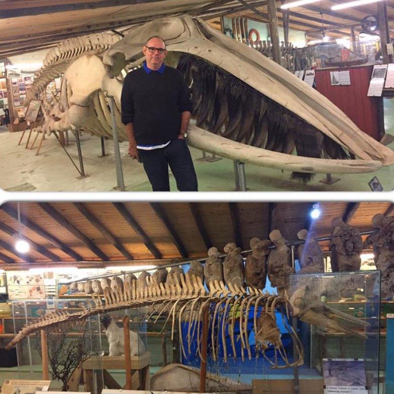 Museu Del Mar em Punta Del Este