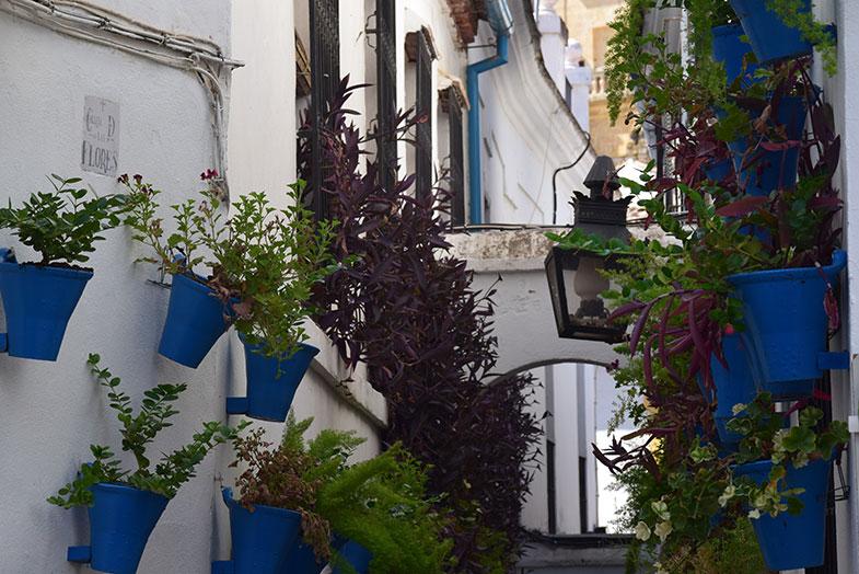 Calleja de las Flores em Córdoba