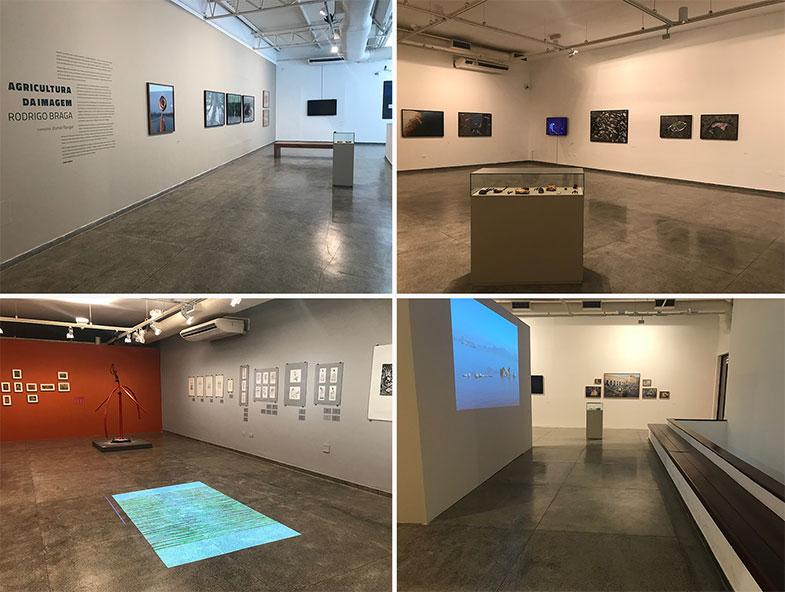 Exposições temporárias no Museu do Estado de Pernambuco