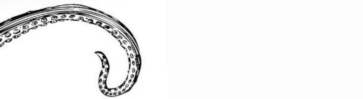 Chamado de Cthulhu - Skript Editora - Canto do Gargula - Tentaculo