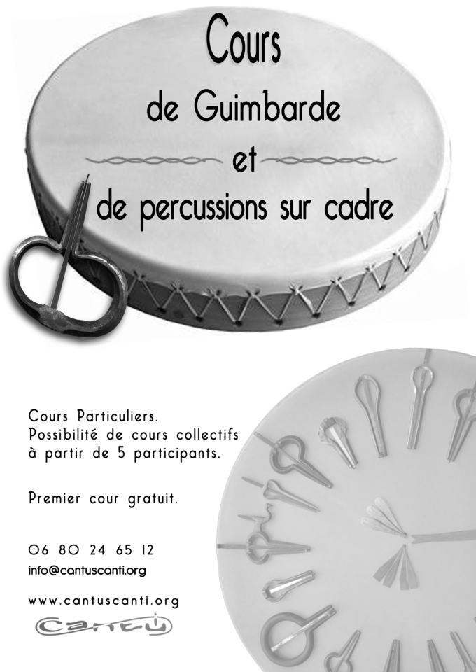 Guimbarde-percussion