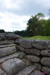 Peaking over toward the German trenches.