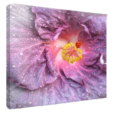 digital photo printing to