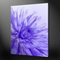 BLUE PURPLE FLOWER CANVAS WALL ART PICTURES PRINTS 20 x 16 ...